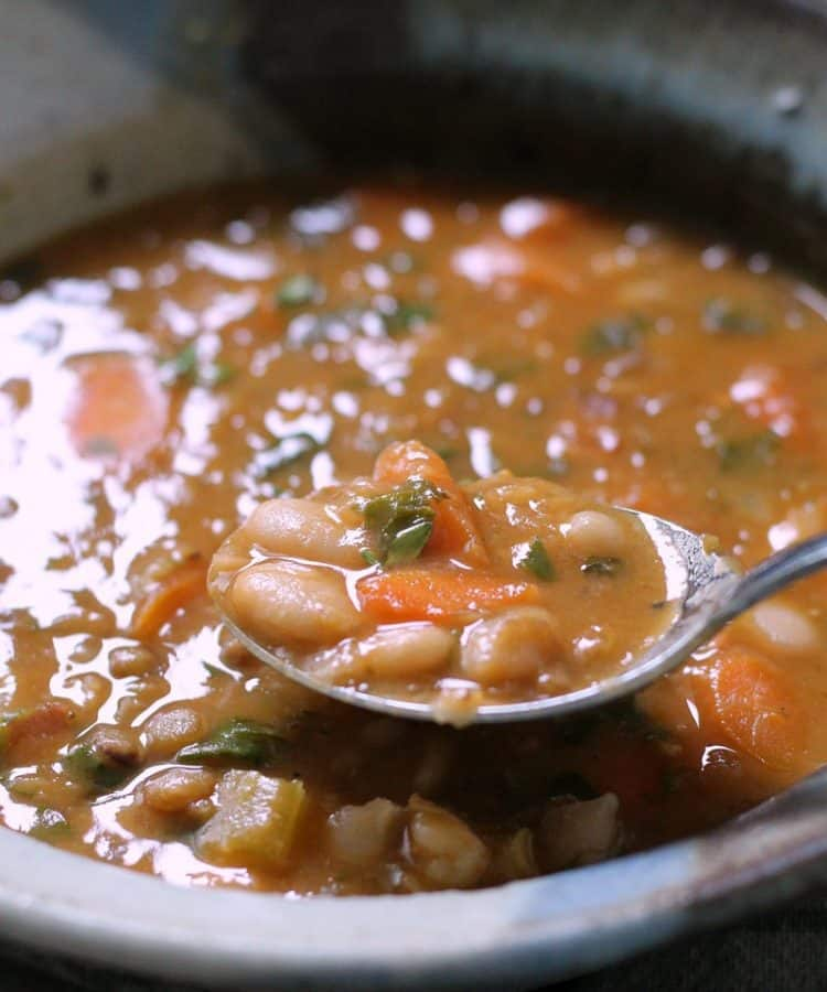 bean with bacon soup ~ bowl of soup with spoonful showing beans lifted