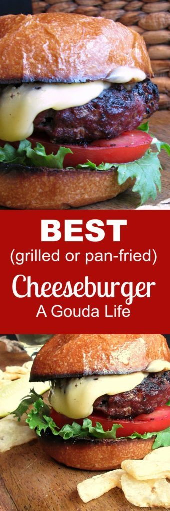 Best Cheeseburger ~ tasty, juicy grilled beef with minced onions loaded with flavor. Grills in just a few minutes. Nothing fancy, nothing finer.