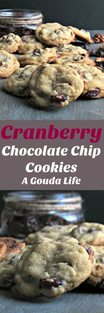 Cranberry Chocolate Chip Cookies ~soft inside, slightly crisp bottom. A perfect blend of the sweet fall flavor of cranberries and semi sweet chocolate.