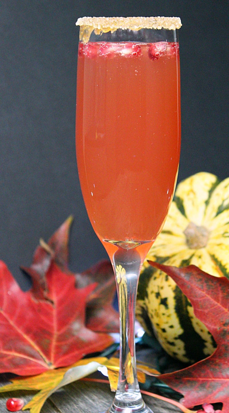Caramel Apple Pomegranate Mimosa ~ Fresh apple cider, pomegranate juice and caramel vodka topped off with champagne in a caramel-sugar rimmed glass.