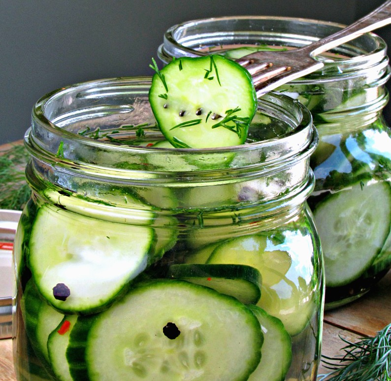 easy refrigerator dill pickles recipe ~side view of pickles in jar and fork spearing a single pickle